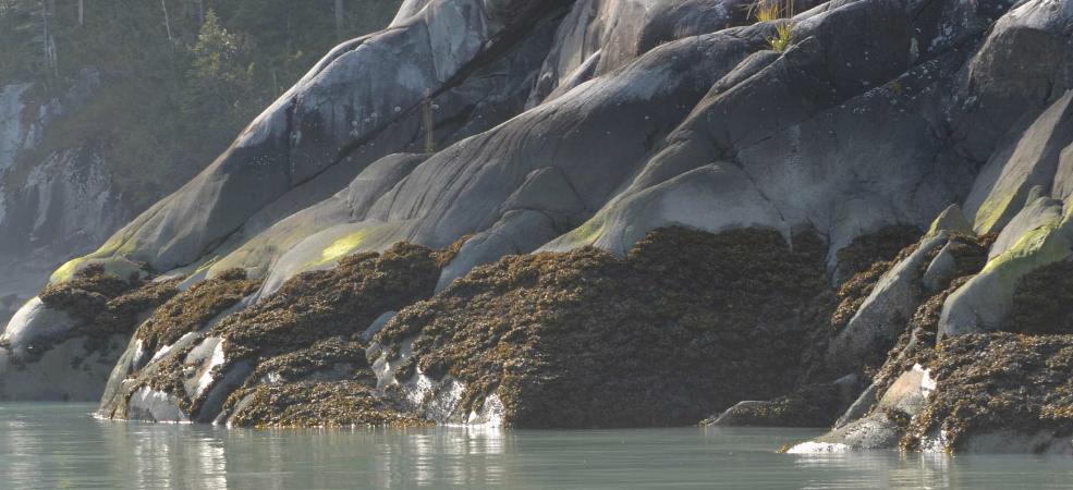 Alaska S Glacier Country